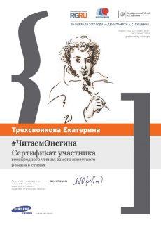 Сертификат1341_Трехсвоякова
